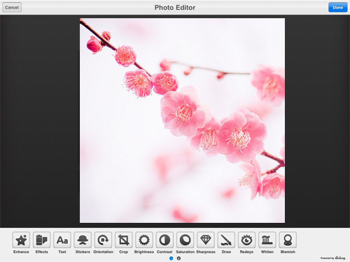 Photo editor for ipad with clone tool