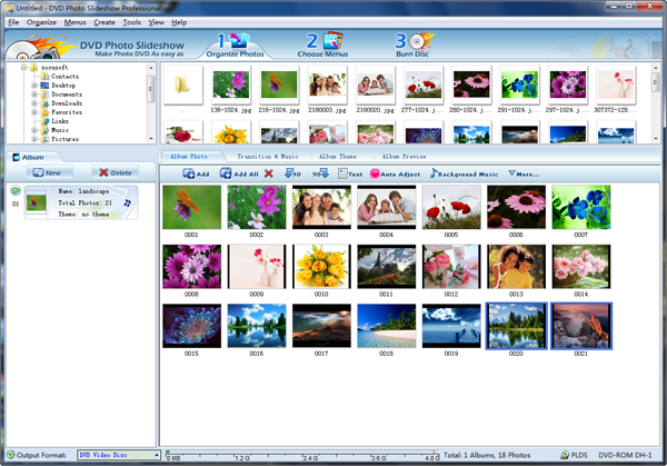 organize photos